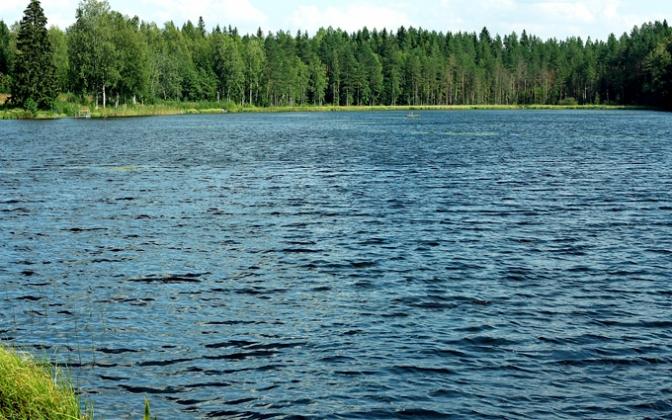 Viitalammen Tillikanranta on Kukonkylän helmi