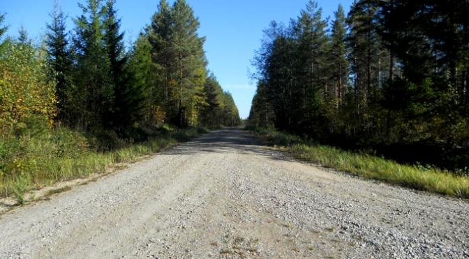 Metsästäjien nuotiopaikka