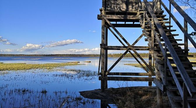 Mulkkujärven lintutorni ja laavu