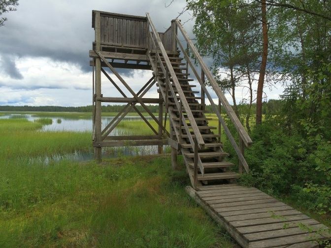 Mulkkujärven lintutorni