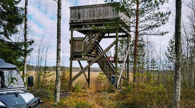 Kuivasjärven lintutorni