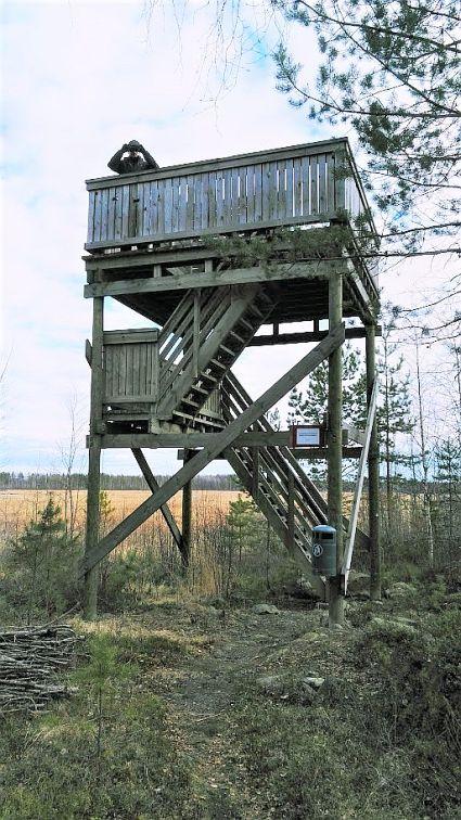 torni pien.jpg